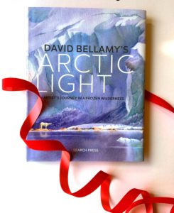Perfect gifts for artists. Arctic Light by David Bellamy.