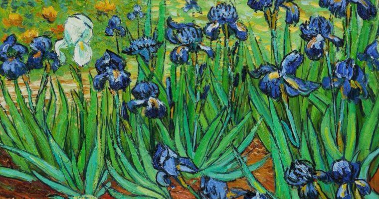 Van Gogh Iris paintings
