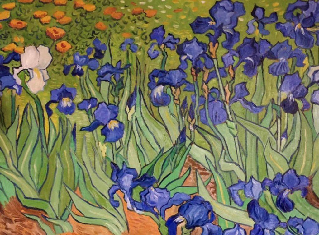 Van Gogh Iris Paintings Pegasus Art Blog