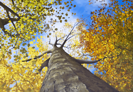 DJ Acrylic Workshop - Autumn Canopy of True Colours painting