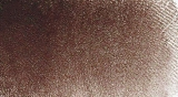 Raw Umber BR 32274